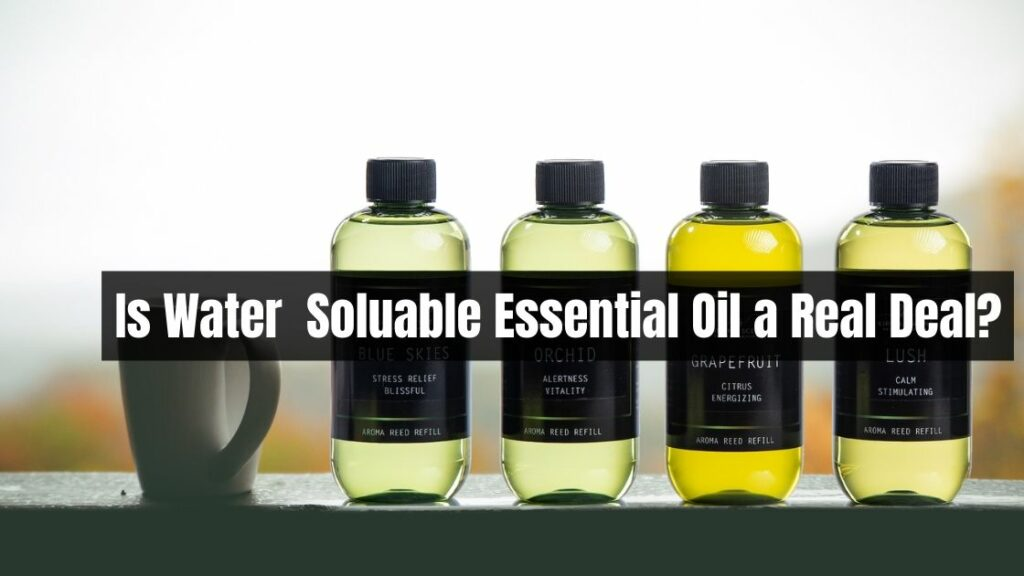 Is-Water-Soluable-Essential-Oil-a-Real-Deal_