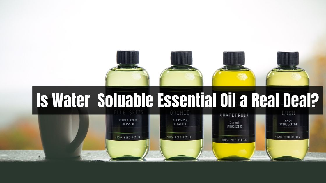 Is Water Based Essential Oil a Real Deal?