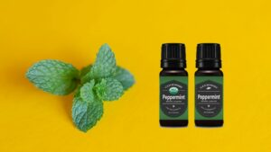 4 Useful Applications of Peppermint Essential Oils