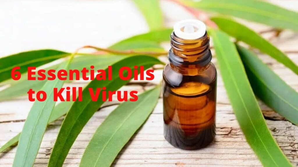6-Essential-Oils-to-Kill-Virus