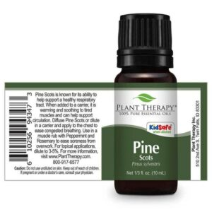 Plant Therapy Pine Scots Essential Oil