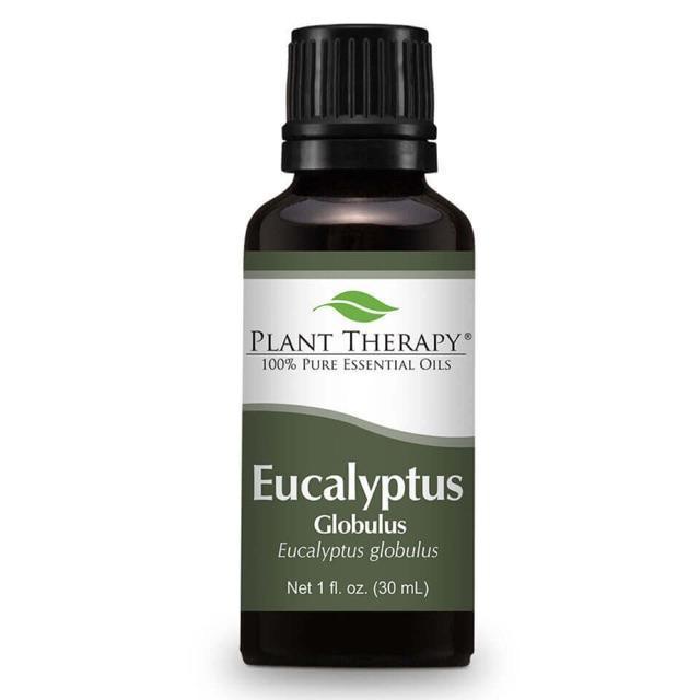 Plant Therapy Eucalyptus Globulus Essential Oil