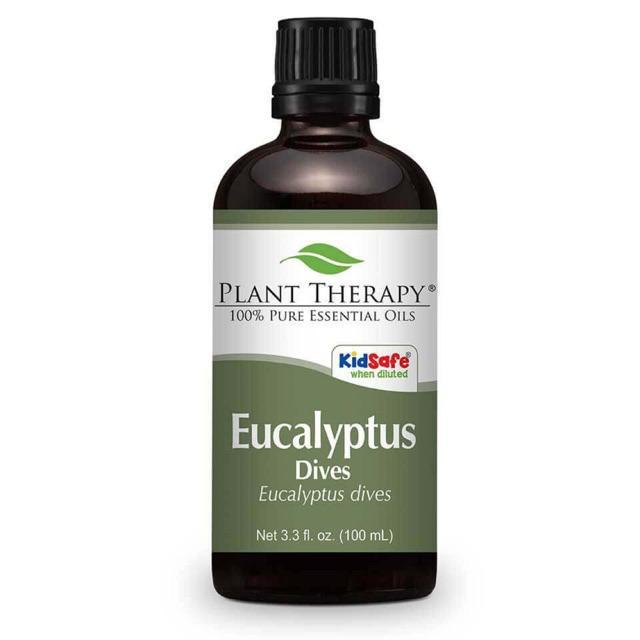 Plant Therapy Eucalyptus Dives Essential Oil