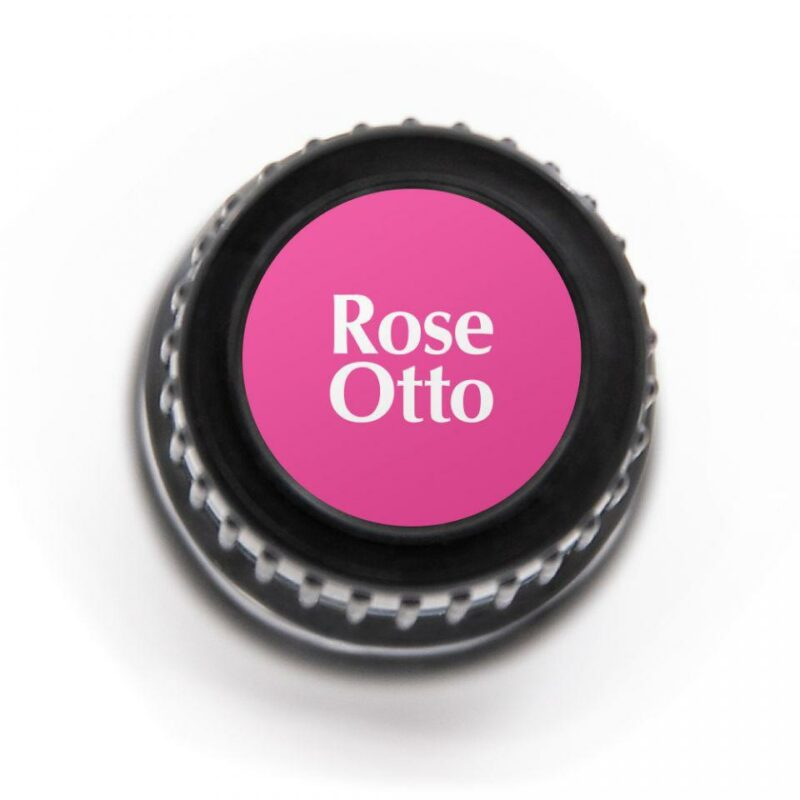 Plant Therapy Rose Otto Organic Essential Oil