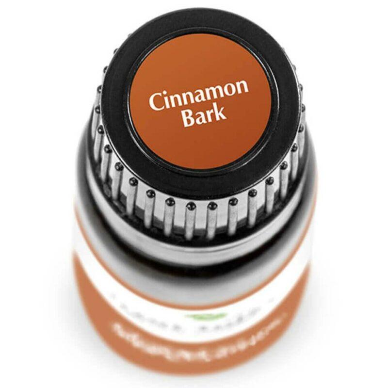 Plant Therapy Cinnamon Bark Essential Oil