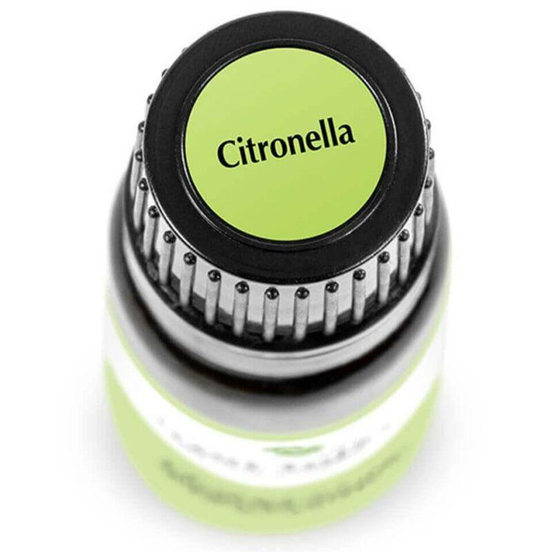 Plant Therapy Citronella Essential Oil