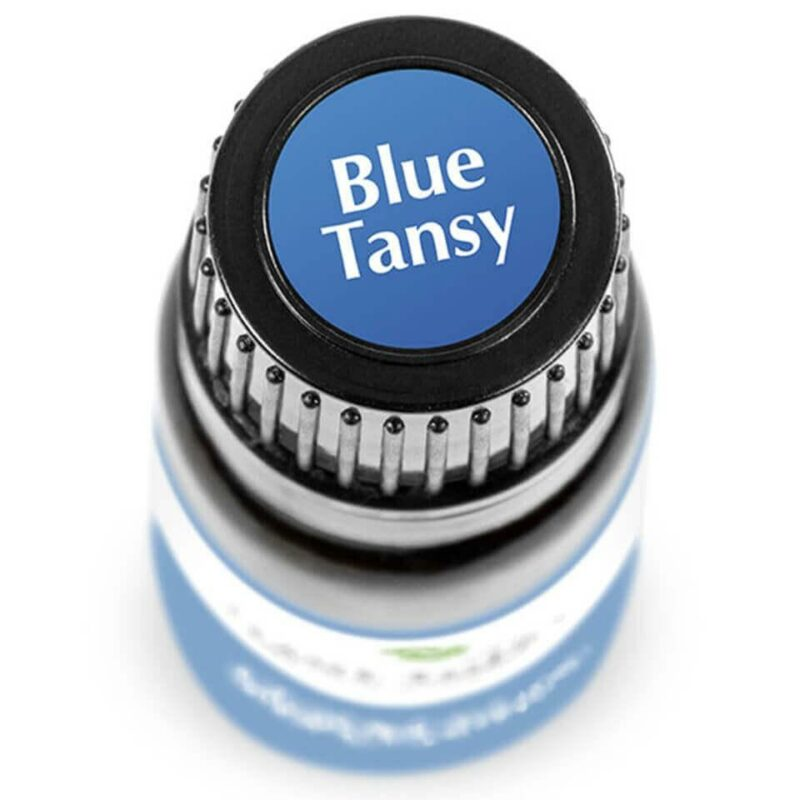 Plant Therapy Blue Tansy Essential Oil