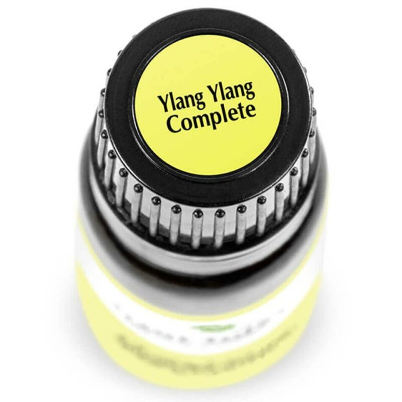 Plant Therapy Ylang Ylang Complete Essential Oil