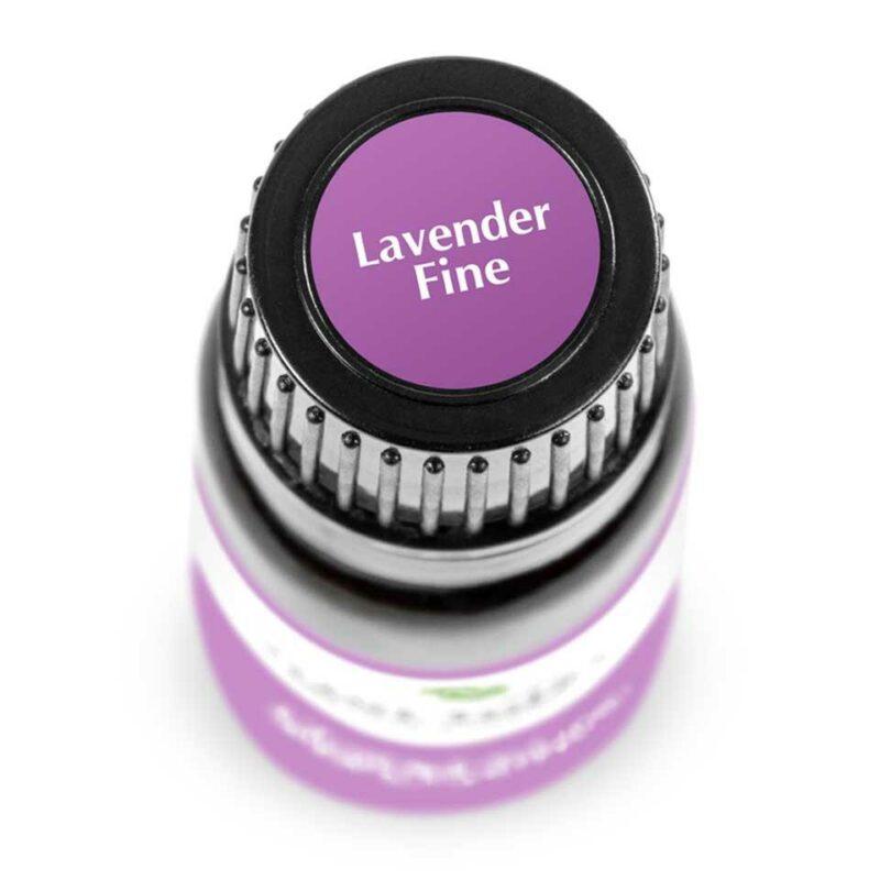 Plant Therapy Lavender Fine Essential Oil