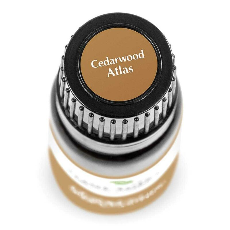 Plant Therapy Cedarwood Atlas Essential Oil