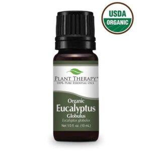 Plant Therapy Eucalyptus Globulus Organic Essential Oil