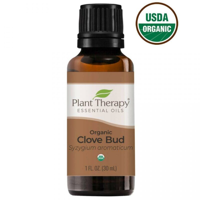Plant Therapy Clove Bud Organic Essential Oil