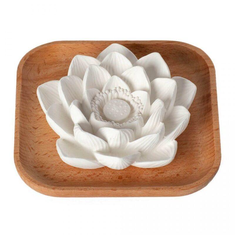 Plant Therapy Passive Lotus Diffuser