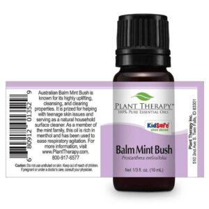 Plant Therapy Balm Mint Bush Essential Oil