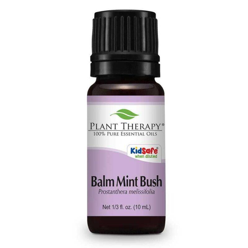 Plant Therapy Balm Mint Bush Essential Oil