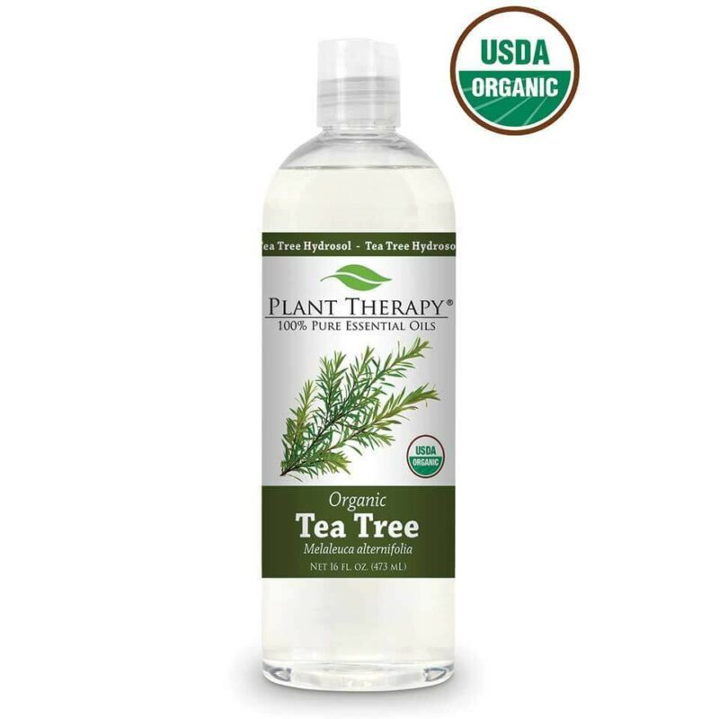 Plant Therapy Tea Tree Organic Hydrosol