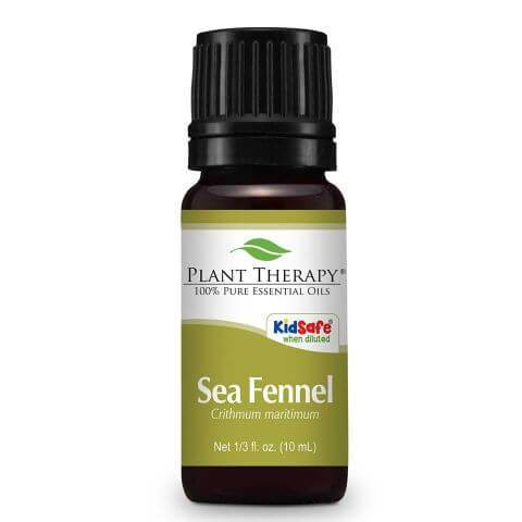 plant therapy sea fennel essential oil 635423
