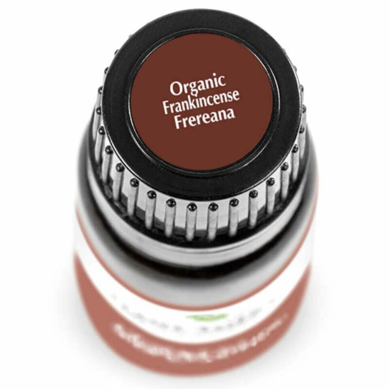 Plant Therapy Frankincense Frereana Organic Essential Oil